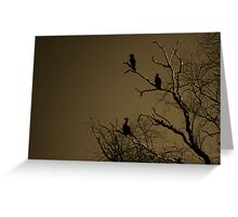 Roosting II Greeting Card