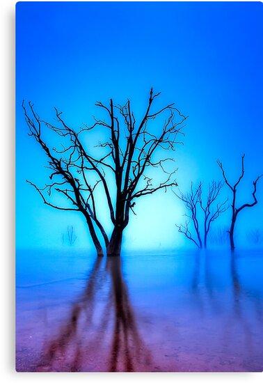 Foggy Dawn at Lake Eildon #1 by Jason Green