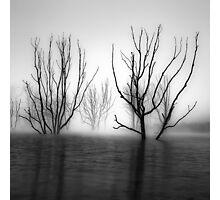 Foggy Dawn at Lake Eildon #2 Photographic Print
