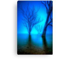 Foggy Dawn at Lake Eildon #3 Canvas Print