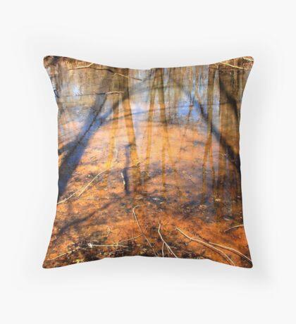 Inland Pool Throw Pillow