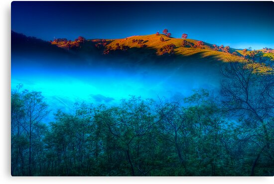 Morning Fog Near Lake Eildon by Jason Green