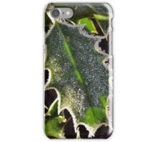 Frosty holly iPhone Case/Skin