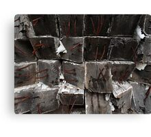 Torn Ends Canvas Print