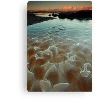 teatree scales...... Canvas Print