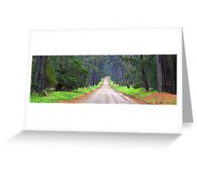 Musk Creek Road - Main Ridge  Greeting Card