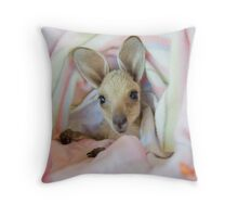 Baby female joey in baby blanket Throw Pillow