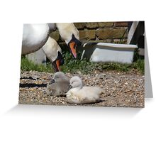 Under the watchful eyes Greeting Card
