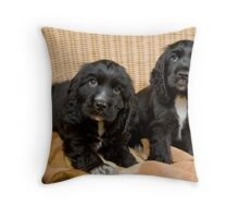 Beautiful Black Cocker Spaniel Puppies Throw Pillow
