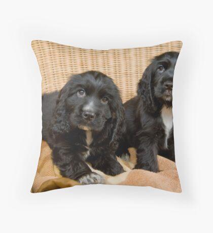 Beautiful Black Cocker Spaniel Puppies Throw Pillow