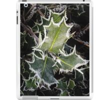 Holly and frost iPad Case/Skin