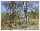 trees by Albert