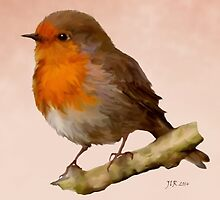 Robin Red Breast by Bamalam Art and Photography