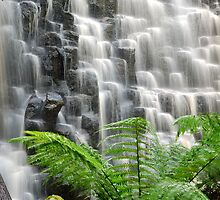 Dip Falls Tasmania by David Bosworth