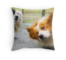 Working Dogs Cooling Off in the Dam Throw Pillow