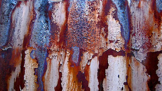 Rusty  Corrugations by Virginia Daniels