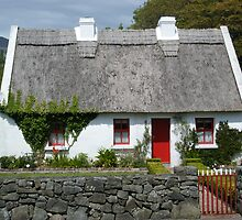 Cute Cottage by Connie  Danaher
