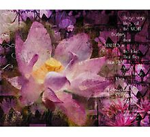 Those Virgin Lilies - Moore Quote  Photographic Print