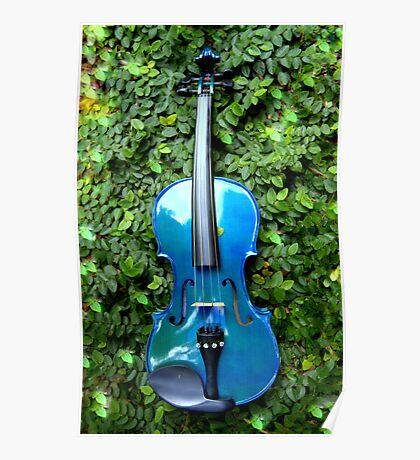 il violino blu nell' edera © 2010 patricia vannucci  Poster