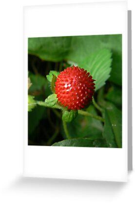 crystal strawberry:) by LisaBeth