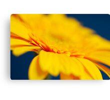 Yellow Gerbera Abstract Canvas Print