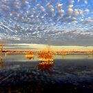 """""""Sunrise Stockyard Reserve""""  by helmutk"""