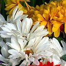 Mixed Bouquet by Michael Degenhardt