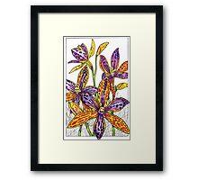 Australian Flower Series - Queen of Sheba Colour Framed Print