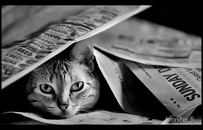Sunday Morning Paper by Jennifer S.