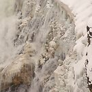 Yellowstone Frozen Canyon Falls by Forrest J. Wolfe