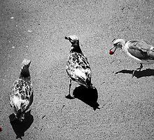 THREE WILD BIRDS by Paul Quixote Alleyne