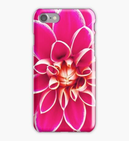 Bright girly pink white dahlia flower  iPhone Case/Skin