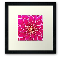 Bright girly pink white dahlia flower  Framed Print
