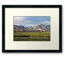 Split Mountain & Green Field Framed Print