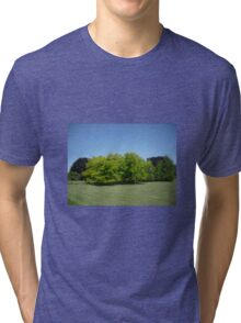 Yellow Trees against Blue Sky Tri-blend T-Shirt