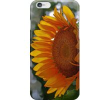 Gold Food iPhone Case/Skin
