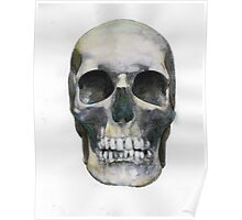 Skull (watercolor) Poster