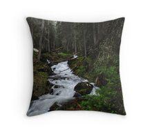 Venable Creek Cascades Throw Pillow