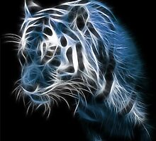 Tiger by S4beR