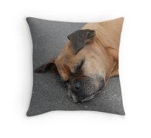 sleeping cute dog Throw Pillow