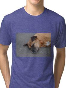sleeping cute dog Tri-blend T-Shirt
