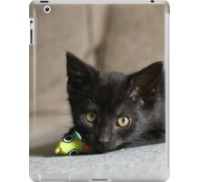 Playing with mice iPad Case/Skin
