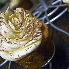 Espresso Cupcakes 1 by Christopher O'Connor