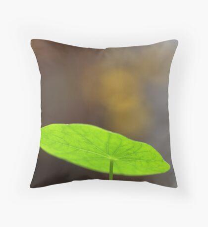 golden gifts Throw Pillow