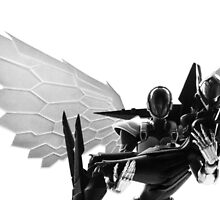 Silver Crow and Black Lotus by andio393