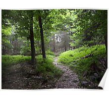 Inviting Trail Poster