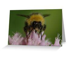 Doo bee doo bee do Greeting Card