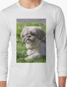 shih tzu  dog Long Sleeve T-Shirt