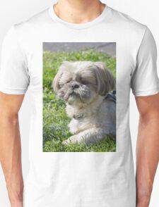 shih tzu  dog Unisex T-Shirt