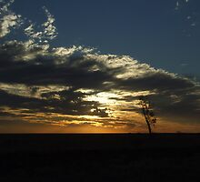 Sunset in the Australian outback by geojas